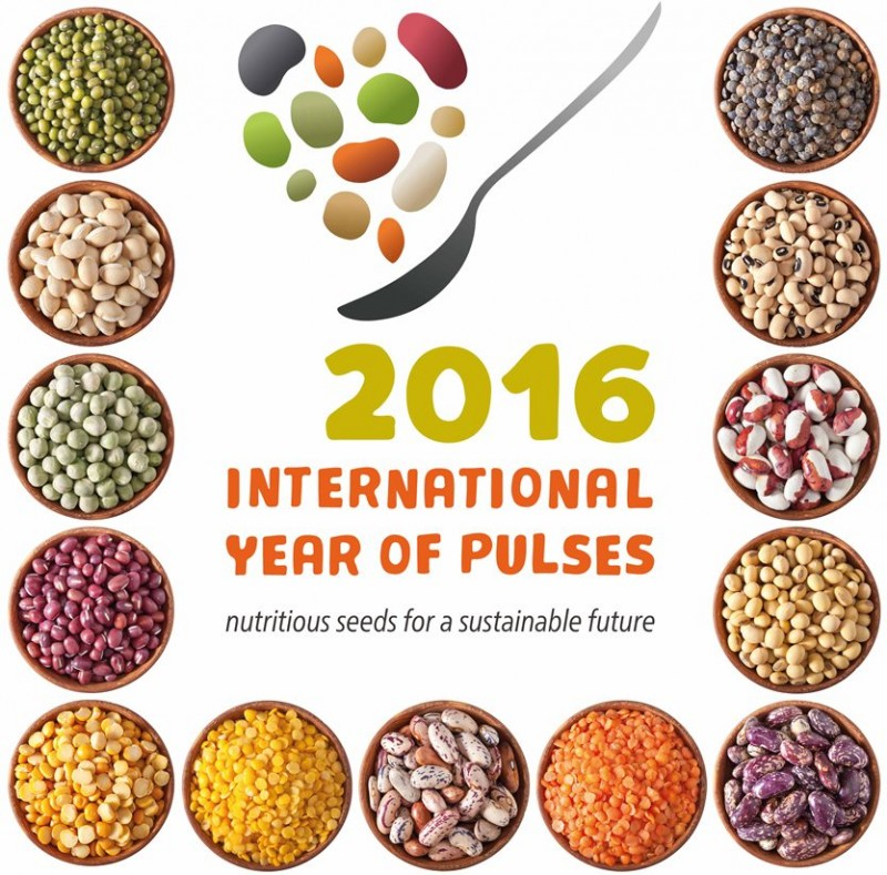 Pulses celebrated internationally as a 'super crop' for sustainability