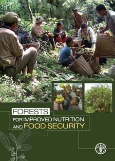 UN Signals Positive Role for Forestry in Food Security and Nutrition